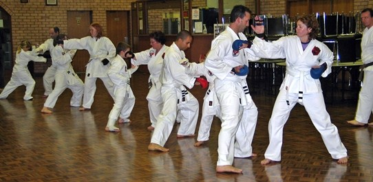 Kan Zen Ryu Karate Figtree, beginner adults karate class.